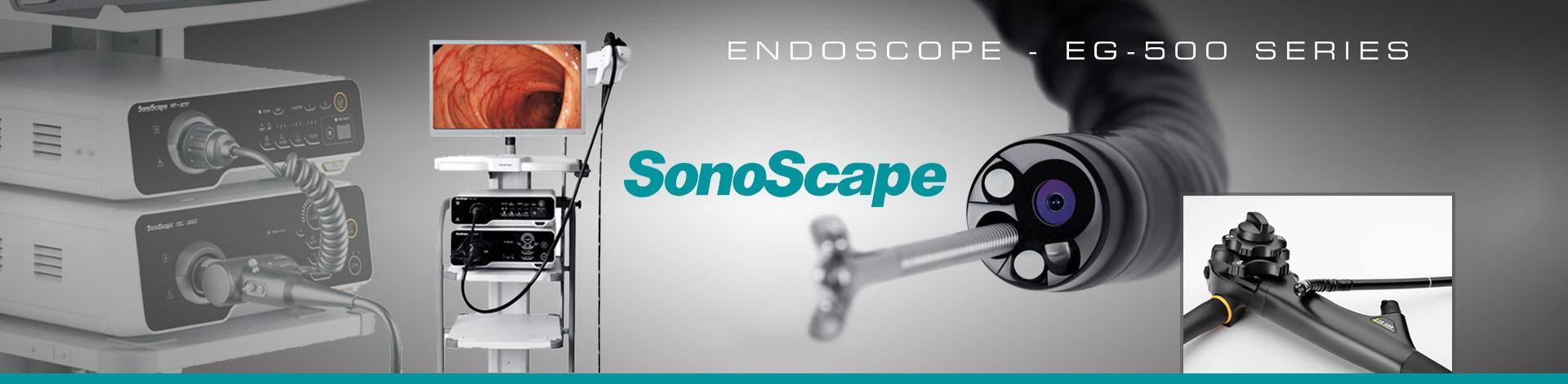 Endoscope